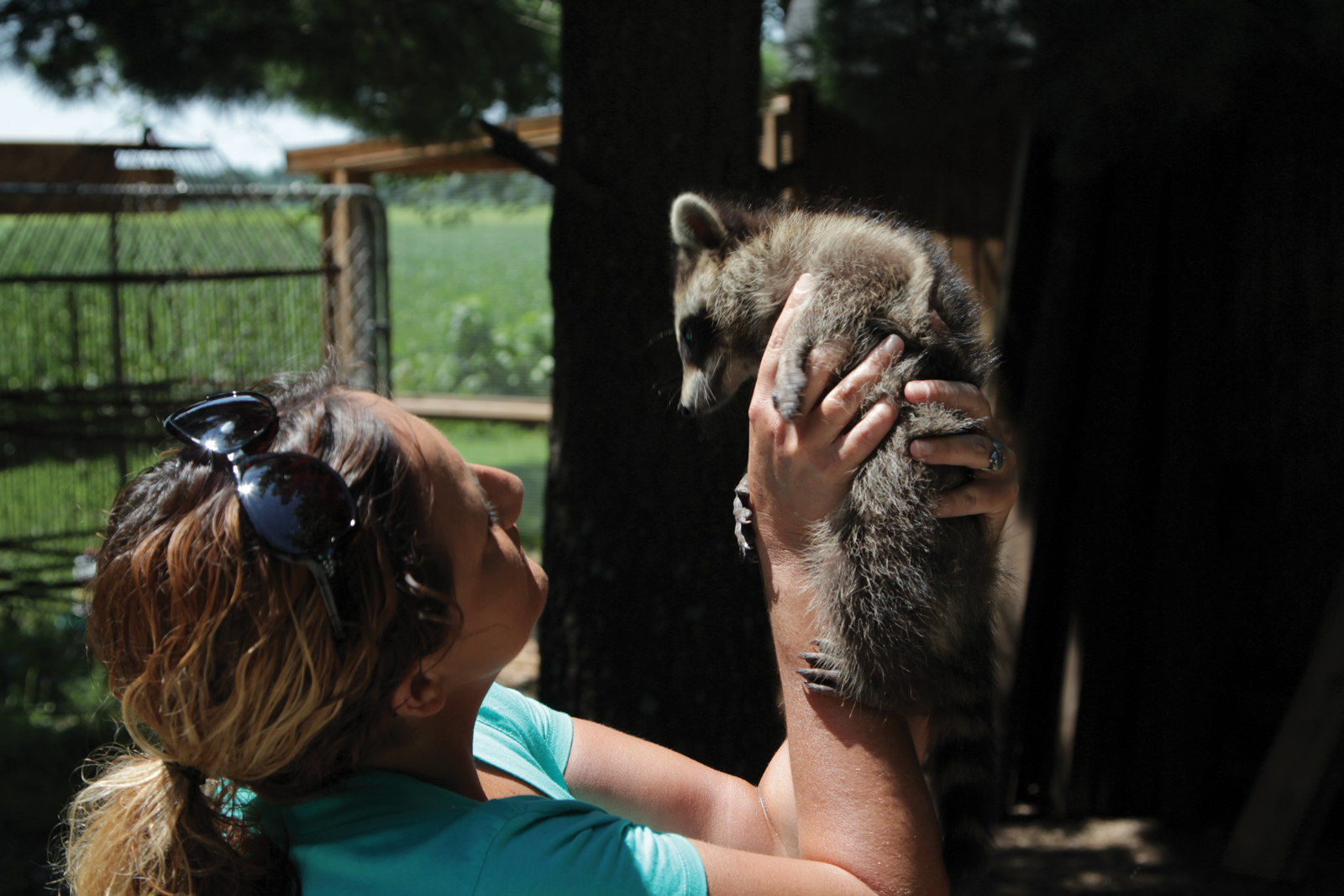 SACRAMENTO, KY.- Licensed wildlife rehabilitator Nikki Christian examines one of many young raccoons in her care. (Photo Credit: National Geographic Channels/Adrienne Allen)